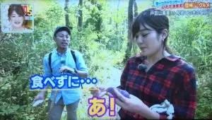 アケビの種をふつうに食べてしまう戸田山貴美アナ