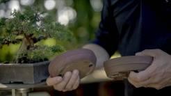 EMPIRE-bonsai-pots-basics.00_00_26_02.Still007