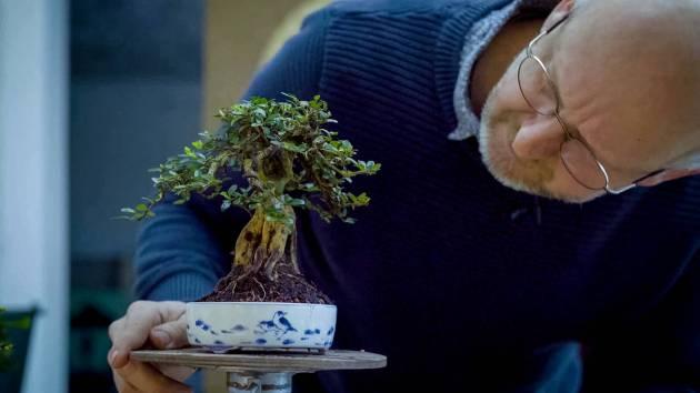 EMPIRE-bonsai-pots-basics.00_05_20_14.Still021