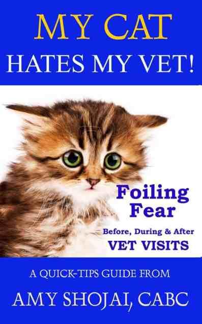 cats hate vet