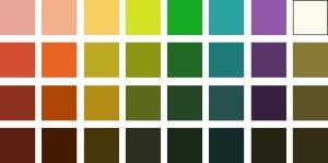 type-autumn-color
