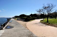 江の島花火大会203の穴場観覧スポット江の島島内の湘南港北緑地公園