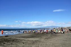 江ノ島片瀬海岸西浜で地引き網