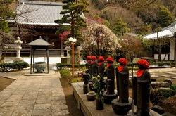 藤沢片瀬の常立寺の枝垂れ梅と六地蔵