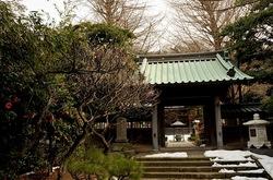 藤沢片瀬の常立寺の山門前