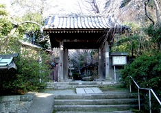 鎌倉紅葉スポット鎌倉駅周辺の安国論寺