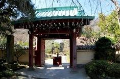 北鎌倉の梅花チェック光則寺の山門