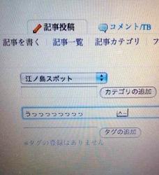 ネコがキーボードを打ったパソコン画面
