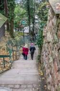 Heidelberg Hill