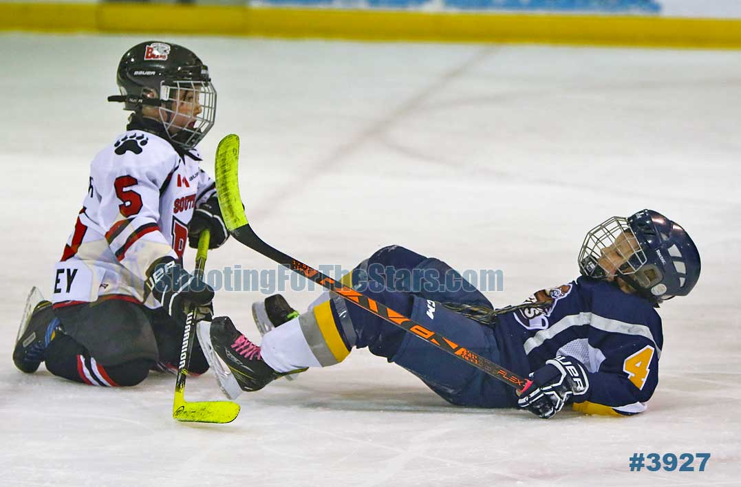 South Muskoka Bears vs Huntsville Otters Novice Rep Hockey