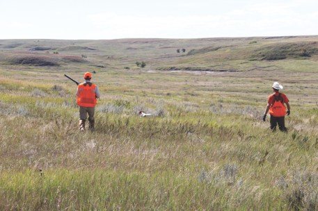 From grasslands to grainfields, Firesteel Creek Lodge offers a variety of habitat types. The author (below and right, with guide Steve Bruns) enjoyed an early season hunt for sharptails, pheasants and Huns.