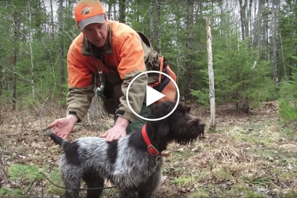 Training Steadiness with Jason Carter Part 2