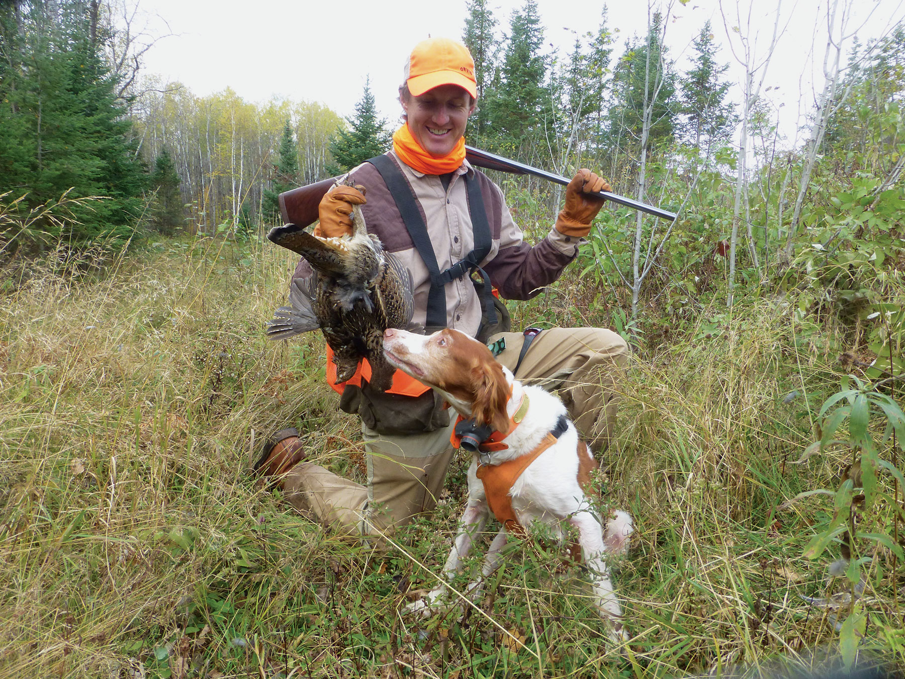 Wisconsin Grouse