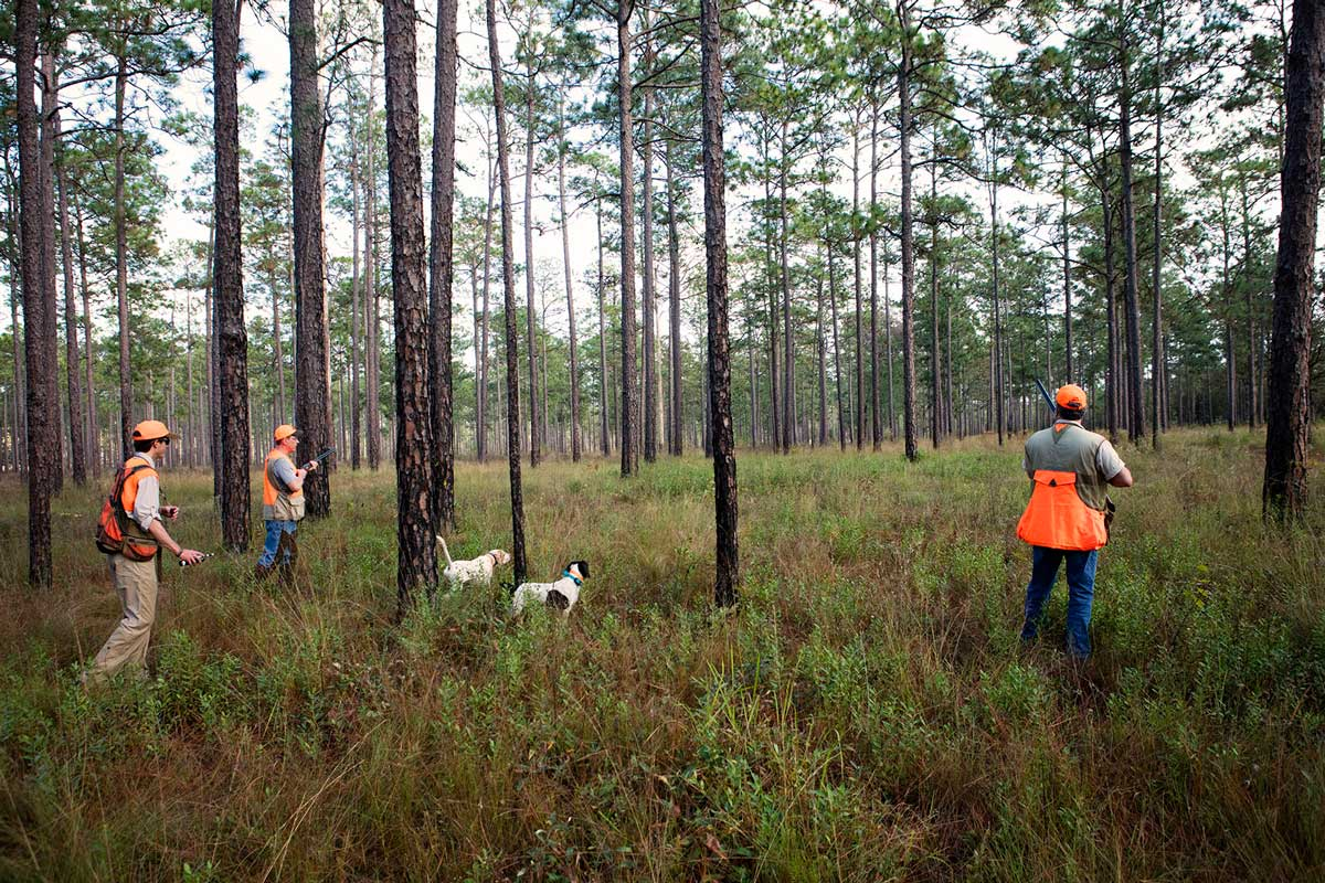 SouthWind-Hunters-on-Point