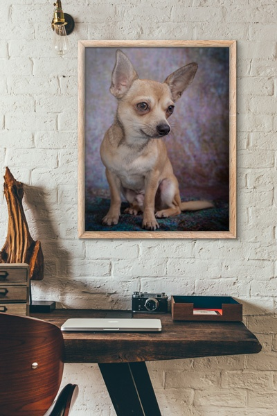 Whatever style your home is, we have artwork to fit in.