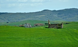 Driving through the countryside and seeing nothing but this beautiful view. Tuscany, Italy.