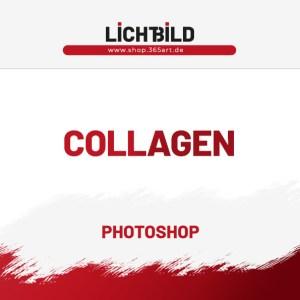 Collagen Vorlagen