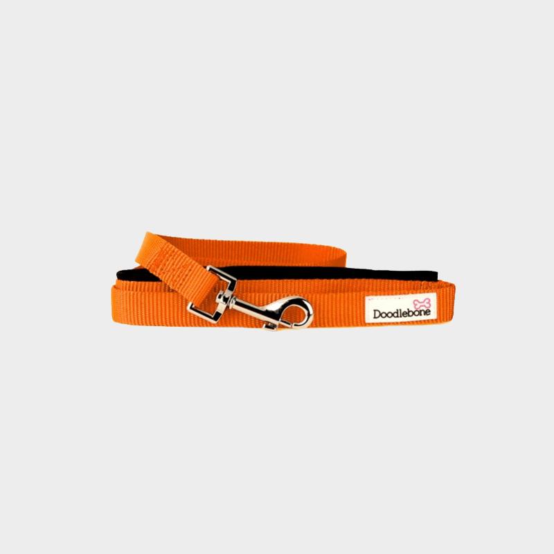 Orange, gepolsterte Leine Bold von Doodlebone®