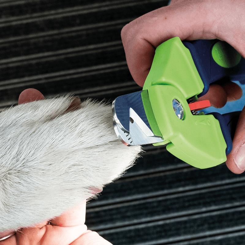 PerAnimal Zen Clipper Precise mit Hundepfote