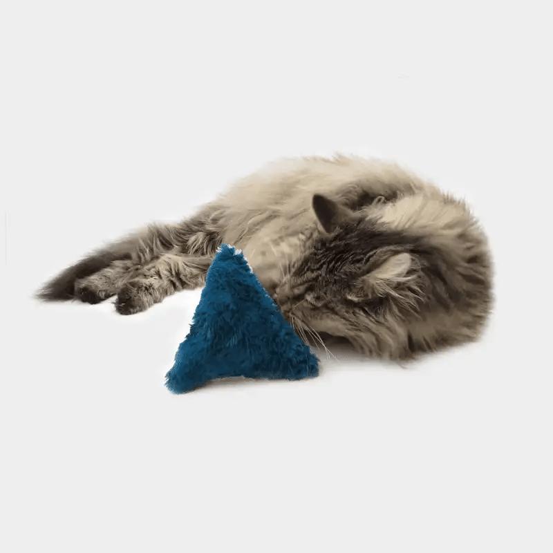 4cats Variante Plüsch Dreieck mit Katze beim Spielen