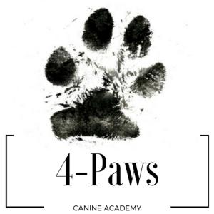 4-paws canine academy shop