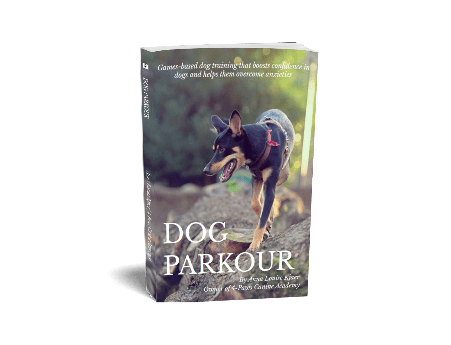 dog parkour book