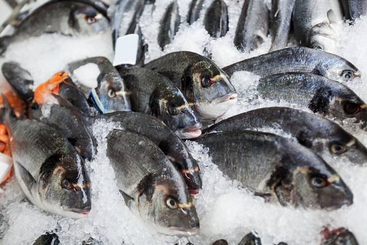Schadstoffbelastung in Fischen & Meerestieren – Teil 1: Quecksilber, PCBs, Dioxine & DDT
