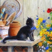 paint-by-number-cat-in-the-garden