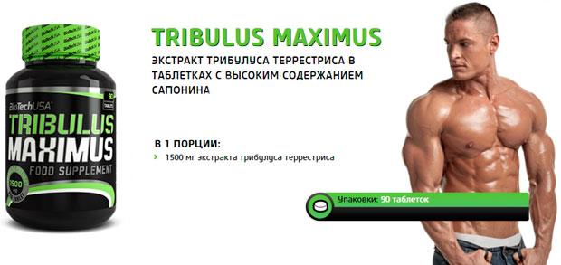 Купить BioTech Tribulus Maximus (90 табл) повышения тестостерона в Киеве с доставкой по всей Украине. Как принимать Tribulus Maximus (90 табл), цена и отзывы - Tribulus Maximus (90 табл) от BioTech - Bodybuilding.ua