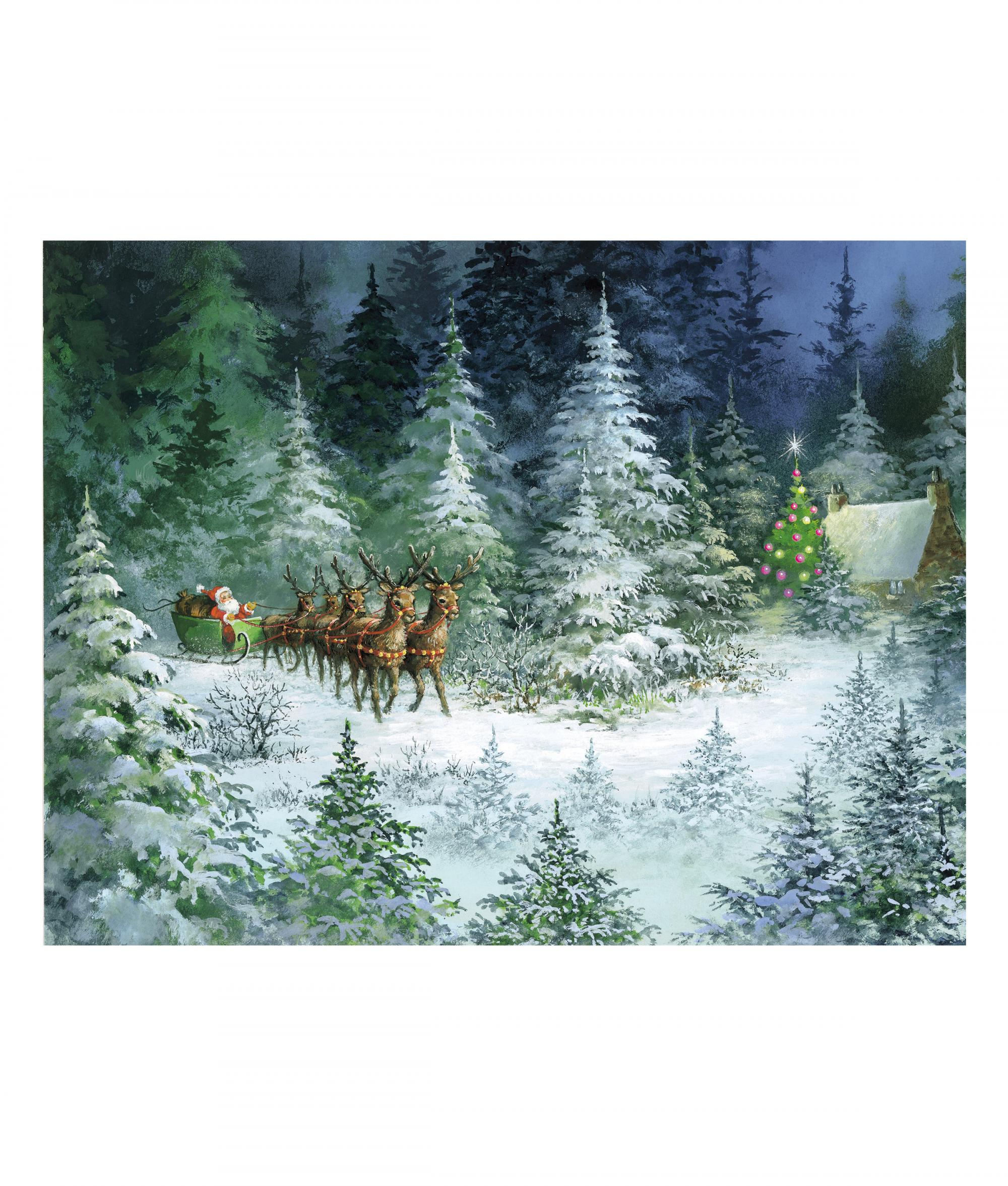 Sleigh In Forest Christmas Card Pack Of 10 Cancer