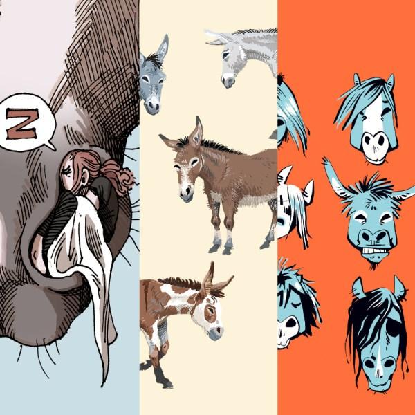 cartes artprints âne et chevaux