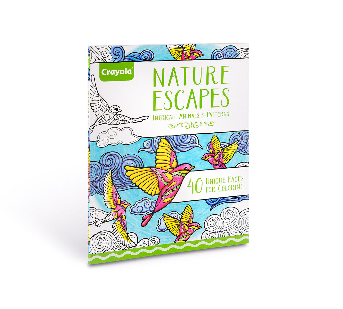 Crayola Nature Escapes Adult Coloring Art Activity 40 Pages Perforated Pages Easy Framing Crayola