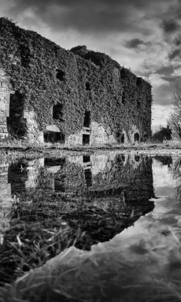 The Lost Distillery Company