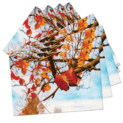 Individual NoteCards by Darren Bowen Photography