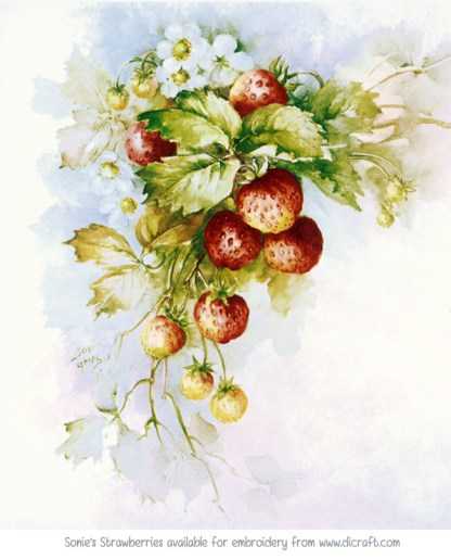 SA 2 Sonie's Strawberries (A3) large panel