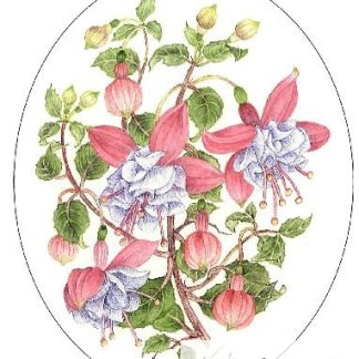 Pink and Blue Fuchsias Embroidery Kit