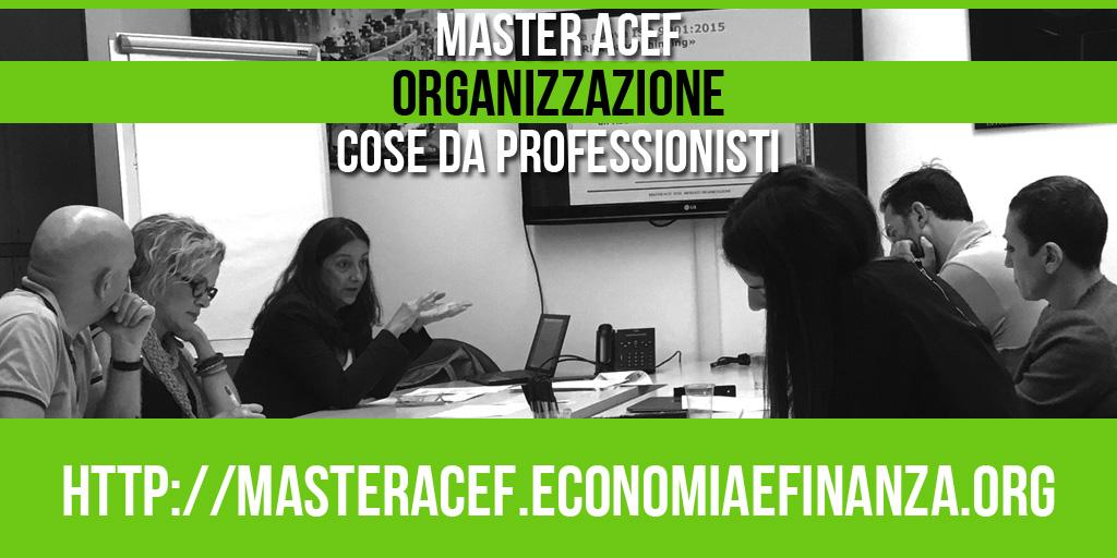 Il Modulo Organizzazione – Master ACEF