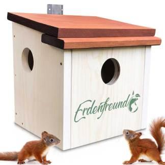 Eichhörnchenhaus