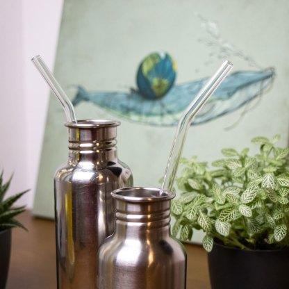 Erdenfreund Umweltshop Glasstrohhalme für Flaschen