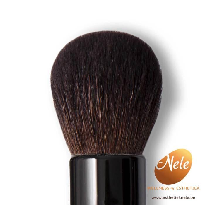 Mineralogie Minerale Make-up Dome Brush Wellness Esthetiek Nele
