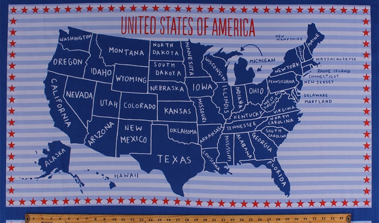235 X 44 Panel United States Of America Country Map