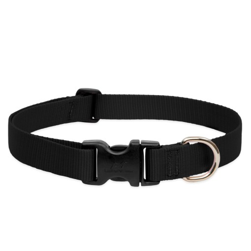 LupinePet Solid Black Dog Collar – Large (1″)