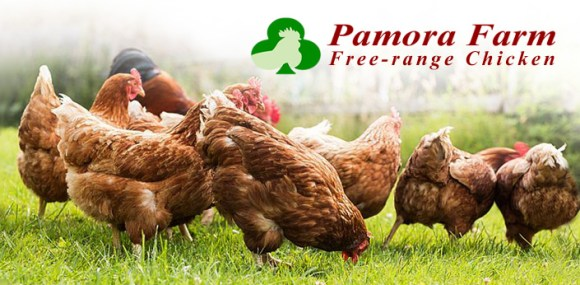 Pamora Farm Free Range Chicken