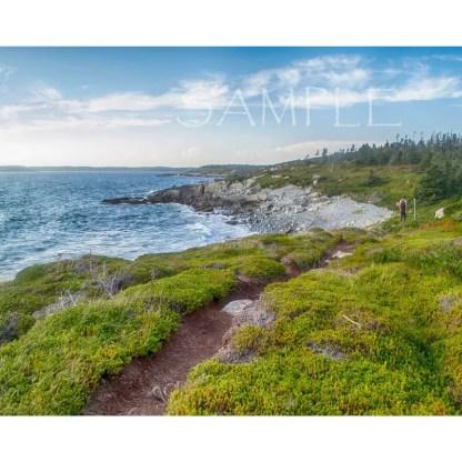 Taylor Head Provincial Park 8x10 print