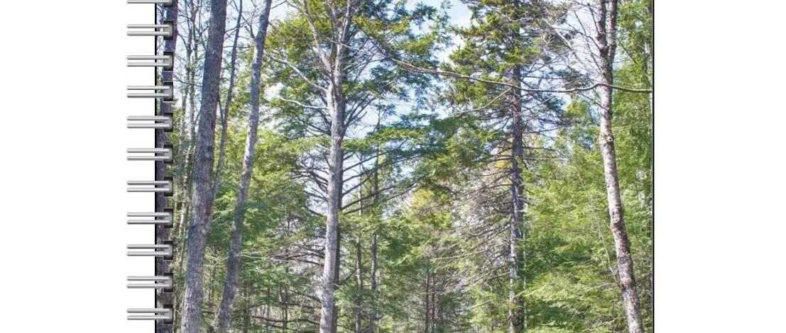 Notebooks/Journals – Nova Scotia Nature (Blank, Lined)