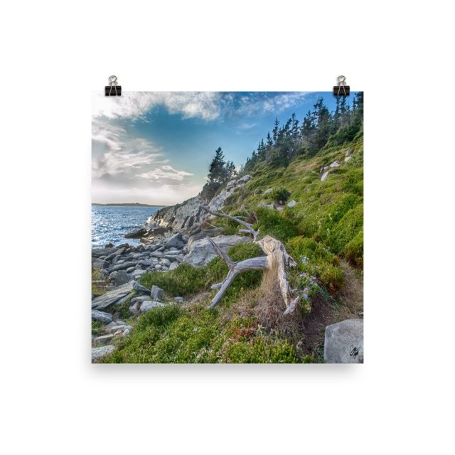 taylor head provincial park nova scotia photo print