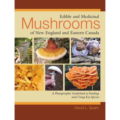 Edible and Medicinal Mushrooms of New England and Eastern Canada: A Photographic Guidebook to Finding and Using Key Species Paperback