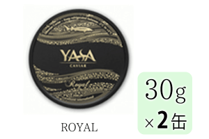 YASA-R-30