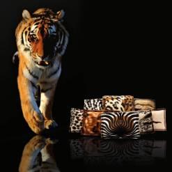 45-012_4cats-schmusekissen-wildlife-edition