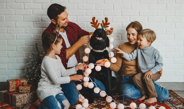 family decorating dog for Christmas